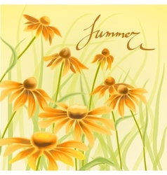Orange and yellow flowers with green leaves floral vector image