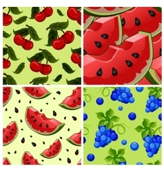Set of Seamless background with red fresh juicy vector