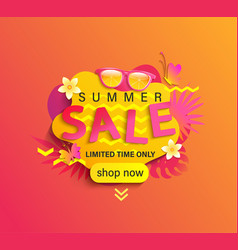 summer sale shop now banner vector image