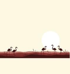 flamingo scene silhouettes vector image vector image