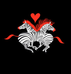 beautiful with zebras in love vector image