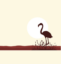 collection of flamingo scenery silhouette style vector image vector image