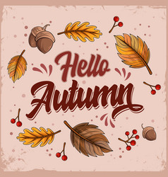 hello autumn lettering with falling leaves and nut vector image
