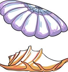 Set sea shells vector