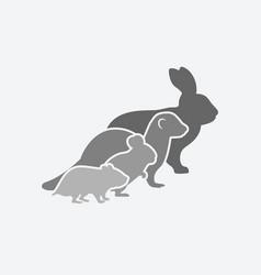 pets silhouettes rabbit ferret chinchilla vector image vector image