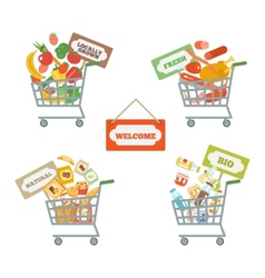 Supermarket Cart With Food vector image vector image