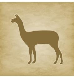 Lama on grunge background vector image