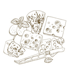 pile of hand drawn cheese with basil vector image vector image