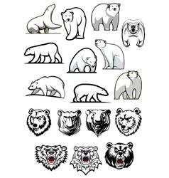White polar bear cartoon characters vector image vector image
