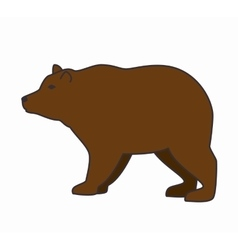 bear wild animal isolated icon vector image