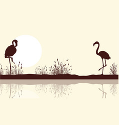 lake landscape and flamingo silhouettes vector image