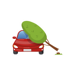 tree falling on vehicle car insurance concept vector image