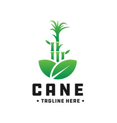 bamboo and cane green logo vector image
