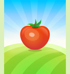 banner template with tomato - vegetables trade vector image