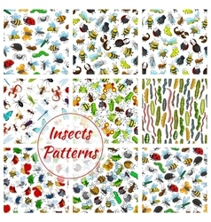 Cartoon insects and bugs seamless pattern vector image