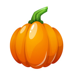cartoon pumpkin on the white vector image