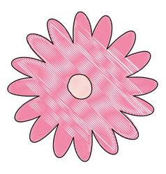 crayon silhouette of hand drawing pink color daisy vector image