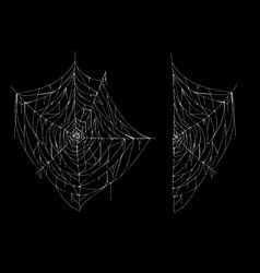 hand drawn spiderweb white spooky cobweb vector image
