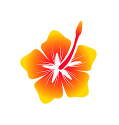 Hawaiian hibiscus flower symbol design vector