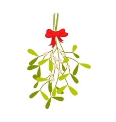 Mistletoe branches Christmas icon vector