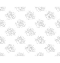 Carnation seamless on white background vector