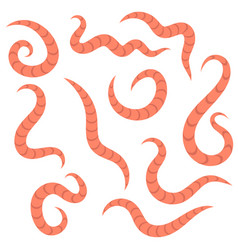 Ascarid helminth pinworm threadworm parasite vector