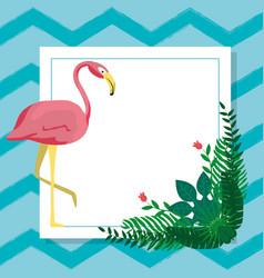 Flamenco exotic bird vector