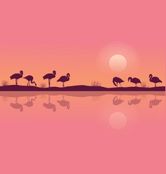 flamingo on riverbank scene silhouette collection vector image