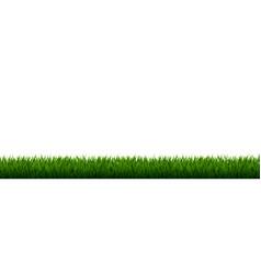 green grass border vector image