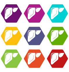 liver icons set 9 vector image