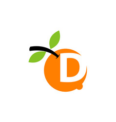 orange fruit letter d vector image