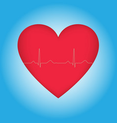 red heart with cardiogram vector image
