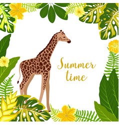 Tropical banner with giraffe vector