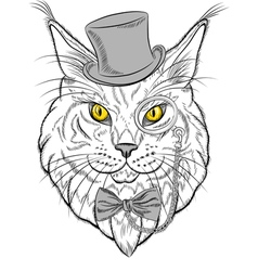 funny Maine Coon cat hipster vector image