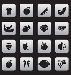 set of 16 editable fruits icons includes symbols vector image vector image