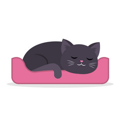 Black cute cat sleeping curled up in a ball in vector