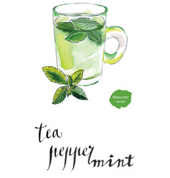 herbal tea cup with fresh peppermint vector image
