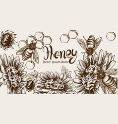 Honey bees and sunflowers line art card vector