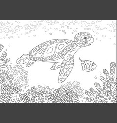 sea turtle on a reef vector image