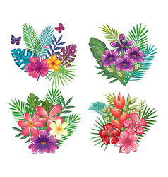 tropical and exotic floral decoration vector image