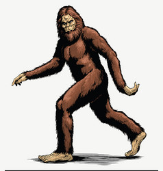 Walking sasquatch full color vector