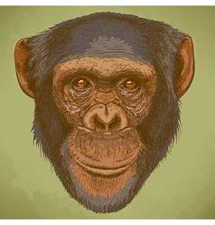 engraving chimp retro vector image vector image