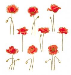 Set of 9 poppy flower vector