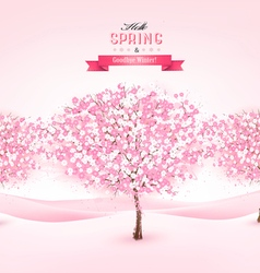 Spring background with cherry blossom trees vector image vector image