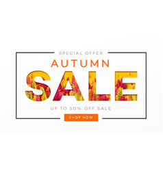 banner for autumn sale in frame from leaves vector image