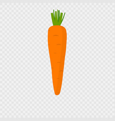 carrot icon with shadow vector image