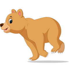 cartoon funny bear vector image