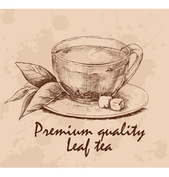 Cup of leaf tea vector