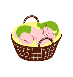 adorable newborn baby in green gnome cap and vector image