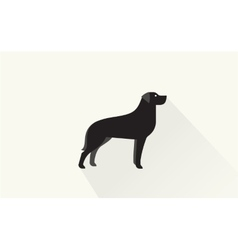 Black retriever icon vector